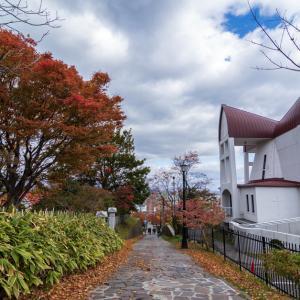 11月9日 教会で 【元町の教会近くで】