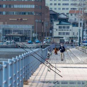 寂しい函館元町 【緑の島 教会群】