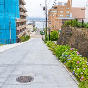 紫陽花が咲き始めた 【日和坂】
