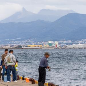 函館どつく電停付近で 2020.09.26