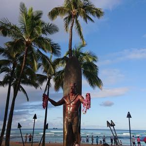 【2019年】ハワイ旅行 Day6 ホテルのオウムとエクストラコンフォート
