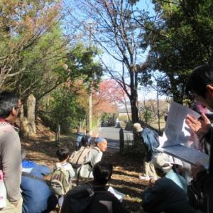 相生山の秋は 楽しいこといっぱい!!