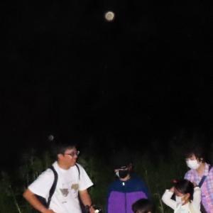 月と虫 after