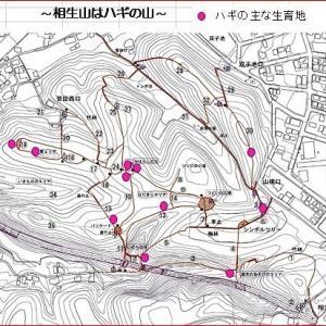 相生山はハギ本番