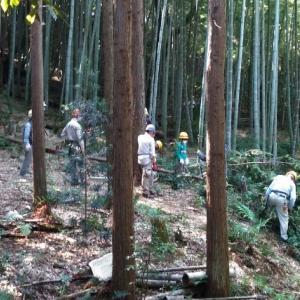 チラ見「森づくり」イベント