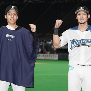 道産子・杉浦稔大と超人・大田泰示で3連勝に導く。あっ、杉谷拳士もいた。