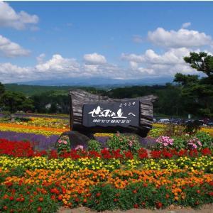 丘のまち・北海道美瑛 ぜぶるの丘&ケンとメリーの木
