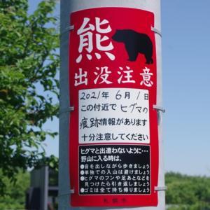 """札幌市東区の住宅街に""""ヒグマ""""出没しました。  ケガ人続出!"""
