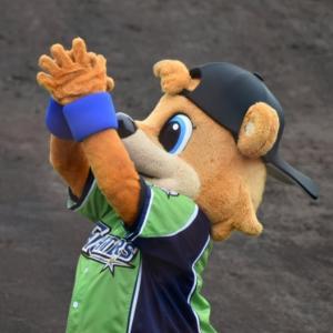 【祝・オールスター出場】MLBはダルビッシュと大谷翔平  日本は近藤健介と上沢直之
