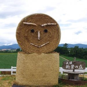 北海道上川郡美瑛町2021  (青い池、四季彩の丘、ぜるぶの丘、白ひげの滝)