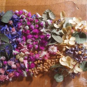 ドライフラワーいろいろ レジン、キャンドル ディスプレイの花材など