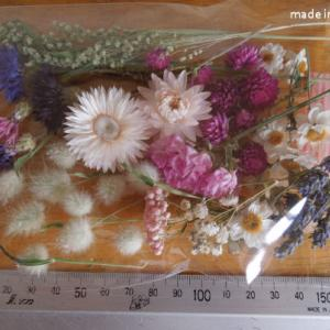 ドライフラワー 矢車草 スターチス 貝細工 ラグラス 詰め合わせ  アソート キャンドル 花材