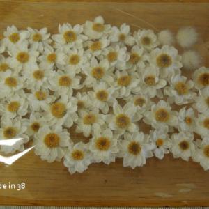 花かんざしのドライフラワー