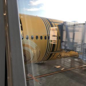 ANA「スターウォーズ・ジェット」唯一のダイヤ未掲載機「C-3POジェット」に乗る
