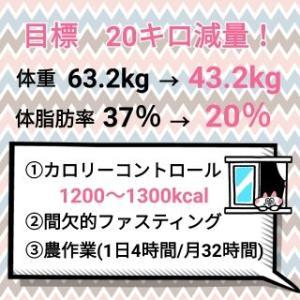 先週の摂取カロリー【1094kcal】&今週の目標