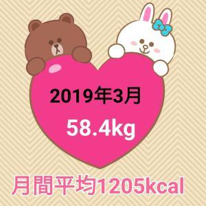 13日で2キロ減量【2019年3月】毎日の摂取カロリー&体重・体脂肪率