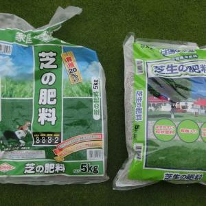 ベント芝パッティンググリーンなのに大粒肥料