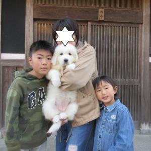 つなぐちゃん、奈良県に巣立って行きました。