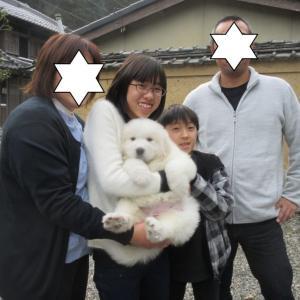 パールちゃん、愛知県に巣立って行きました。