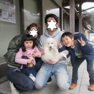 ムゥちゃん、大阪に巣立って行きました。