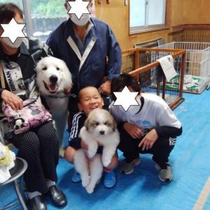 クオーレ君、岐阜県へ巣立っていきました。