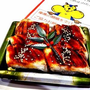 アナゴ寿司 炭焼きホルモン丼
