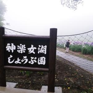 神楽女湖の花菖蒲PART2