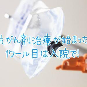 抗がん剤TC療法1クール目は2泊3日の入院で!気になる費用は?