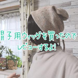 抗がん剤の抜け毛対策に帽子用ウィッグを買ってみたよ