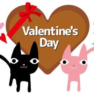 バレンタイン、猫好きさんにおすすめのチョコとチョコ以外いろいろ