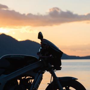 ウルフ 支笏湖で日の出を