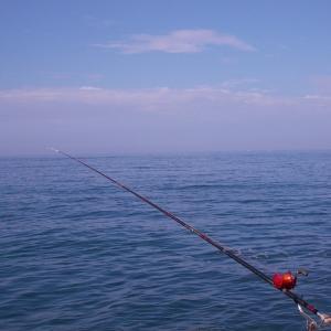 7月下旬、石鯛釣り(夏磯ですか?)