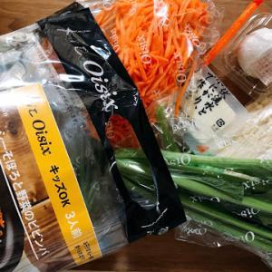 オイシックスのミールキット「ビビンバ」を野菜嫌いの子供が大絶賛!