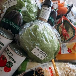 食材宅配Oisixレシピ「ベジごはん」の野菜が好きになった子ども!