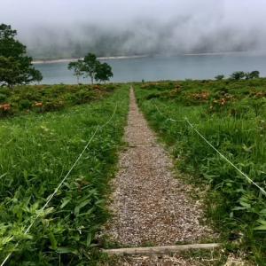 お花の野反湖ノルディックウォーキング