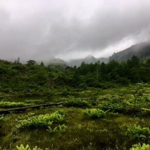 高山植物保護パトロール