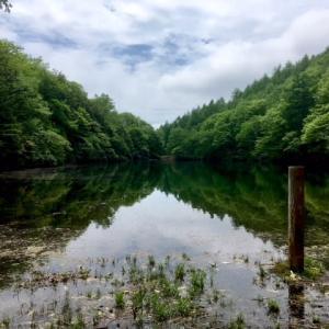 伝説の伝わる池