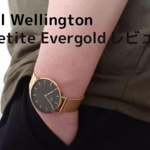 ダニエルウェリントン新作腕時計【PETITEEVERGOLD】新たなモデルを大量写真でレビュー