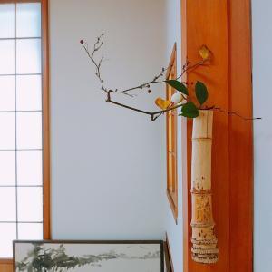 12月の茶花 白玉椿、猿捕茨