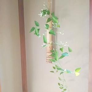 8月の茶花 仙人草