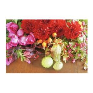 10月の「季節のお花お届けします!」のご案内です