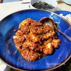 作り過ぎたミートソースで鶏胸肉煮と こないだ漬けた玉ネギ