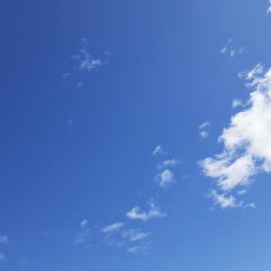 青空のもと 収穫したコチュで コチュチャンアチ