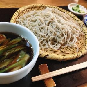 【そば処おきな@立山町】ミシュランガイド富山・石川版にも掲載された、日本庭園を眺めながら食べる事ができる人気の本格手打ち蕎麦