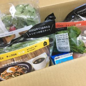 【オイシックス】面白ネーミングの野菜も入ってます♪ 今、人気の献立キット KitOisix入りおためしセットを注文してみた!