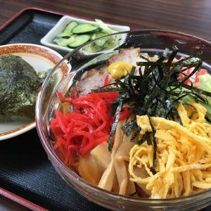 【塩苅食堂】富山の人気老舗食堂!自家製麺の冷やし中華はコシが強い!焼豚おにぎりは鉄板だよ♪