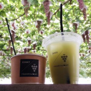 【宮崎ぶどう園@砺波】コールドプレスジュースと作りたてソルベが楽しめる散居村のぶどう園!
