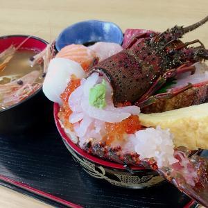 【金沢港いきいき魚市】上島商店の土日限定 特選海鮮丼が凄い!これが1000円でいいの?!