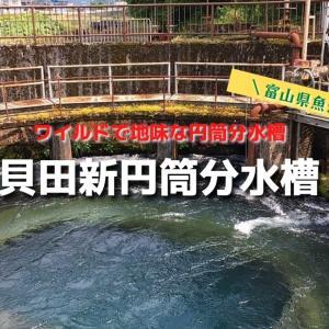 【貝田新円筒分水槽】魚津にある2つ目の分水槽はワイルドで野性的でした!