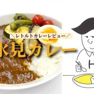 レビュー【氷見カレー@レトルト】八村塁で話題の氷見のB級グルメ!どんな味なの?実食レポート!